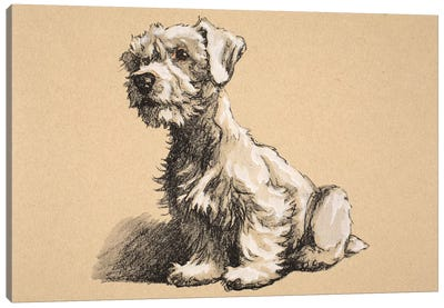 Sealyham, 1930, Illustrations from his Sketch Book used for 'Just Among Friends', Aldin, Cecil Charles Windsor  Canvas Art Print