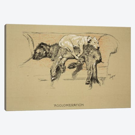 Agglomeration, 1930, 1st Edition of 'Sleeping Partners', Aldin, Cecil Charles Windsor  Canvas Print #BMN3041} by Cecil Charles Windsor Aldin Canvas Print