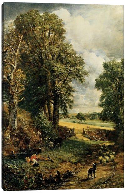 The Cornfield, 1826  Canvas Art Print