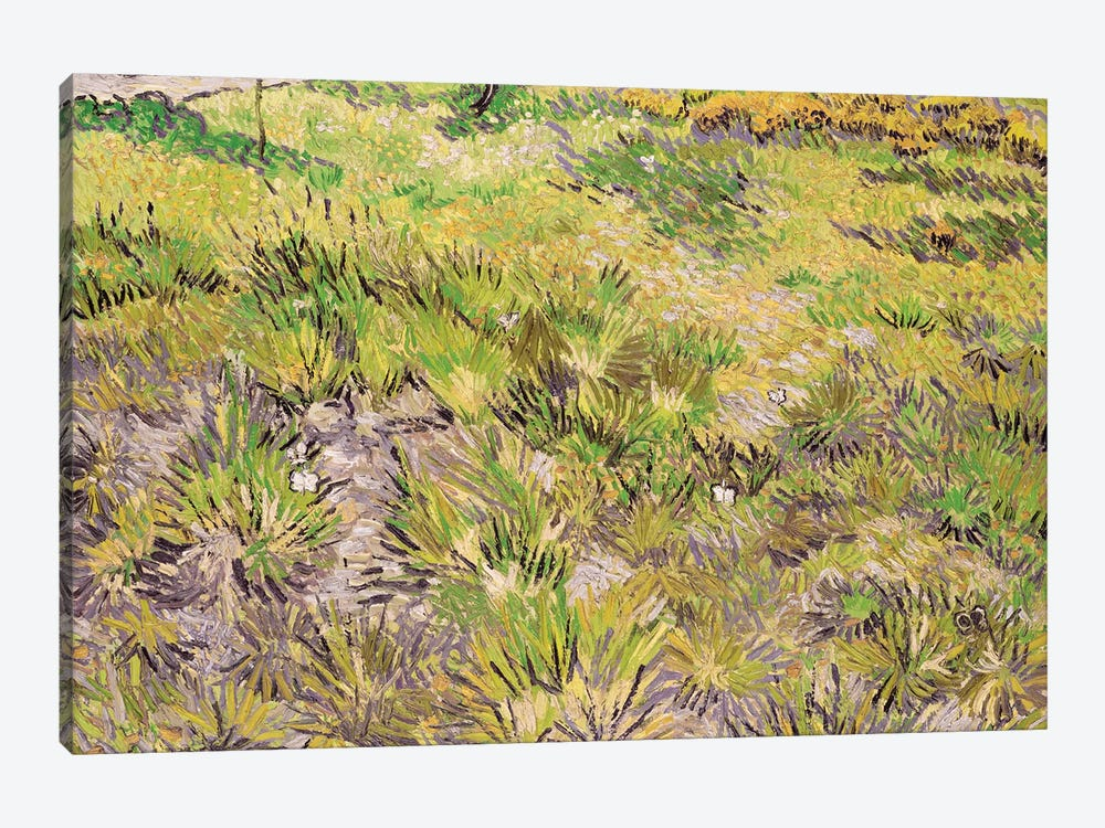 Meadow with Butterflies, 1890  by Vincent van Gogh 1-piece Canvas Artwork
