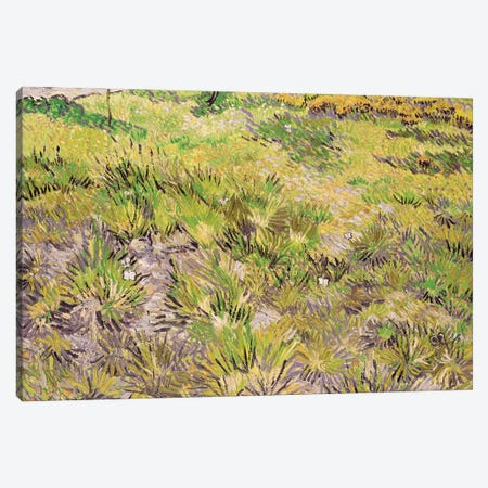 Meadow with Butterflies, 1890  Canvas Print #BMN3069} by Vincent van Gogh Canvas Print