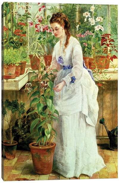 Young Lady in a Conservatory Canvas Art Print