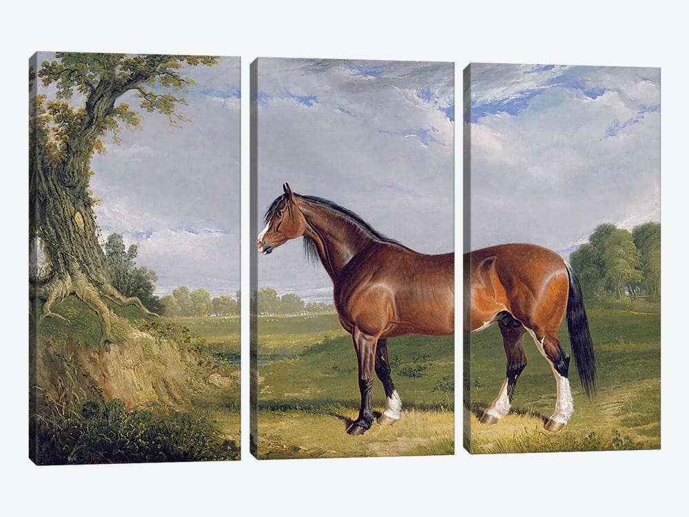 A Clydesdale Stallion, 1820  by John Frederick Herring Sr 3-piece Canvas Wall Art