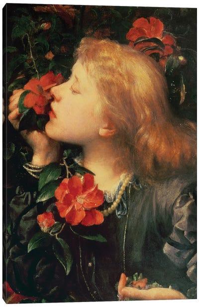 Portrait of Dame Ellen Terry  Canvas Art Print