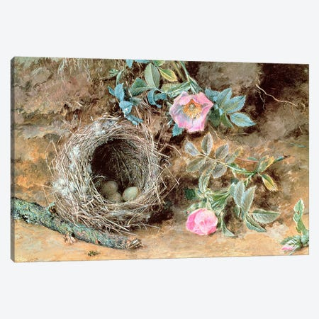 Wild Roses and Birds' Nests Canvas Print #BMN320} by William Henry Hunt Canvas Print