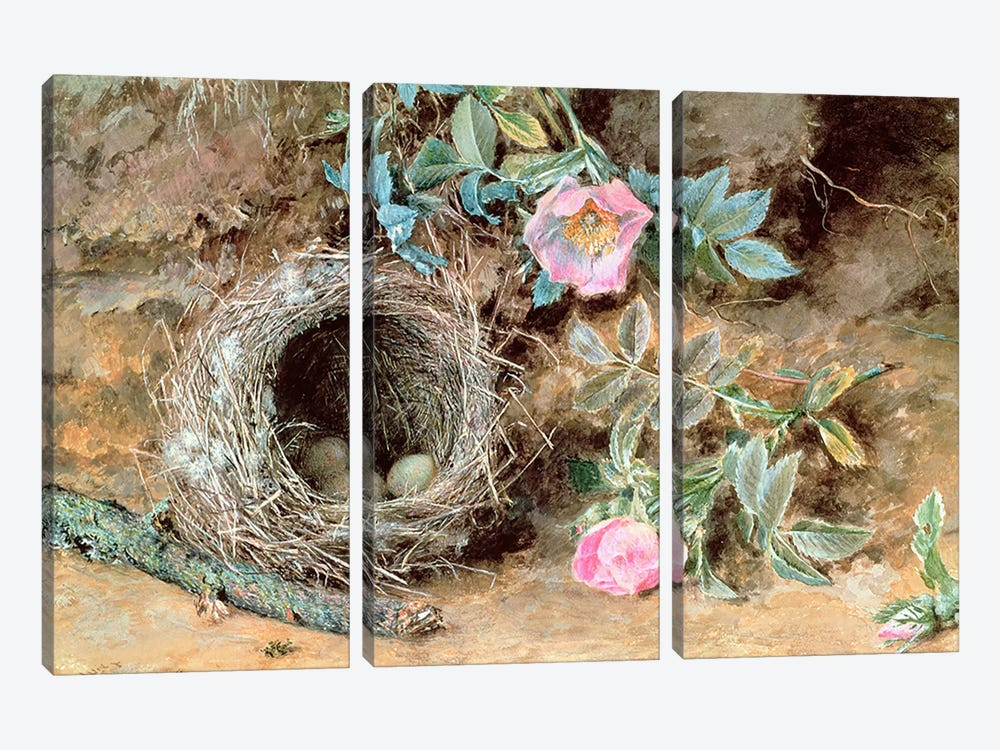 Wild Roses and Birds' Nests by William Henry Hunt 3-piece Canvas Print