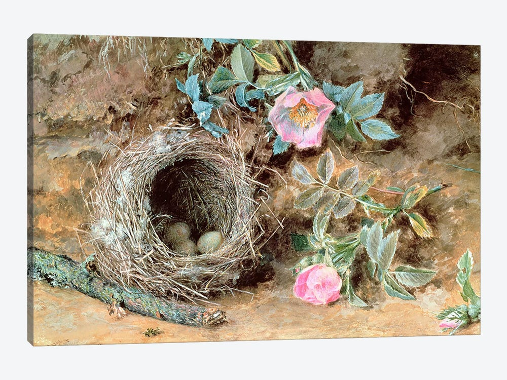 Wild Roses and Birds' Nests by William Henry Hunt 1-piece Art Print