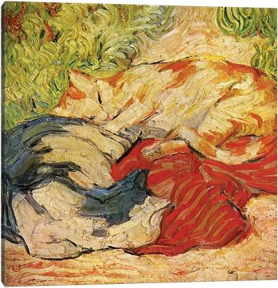 Cats, 1909-10  Canvas Art Print