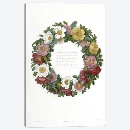 Christmas Roses Canvas Print #BMN323} by Pierre-Joseph Redouté Canvas Print