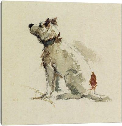 A Terrier, sitting facing left  Canvas Art Print