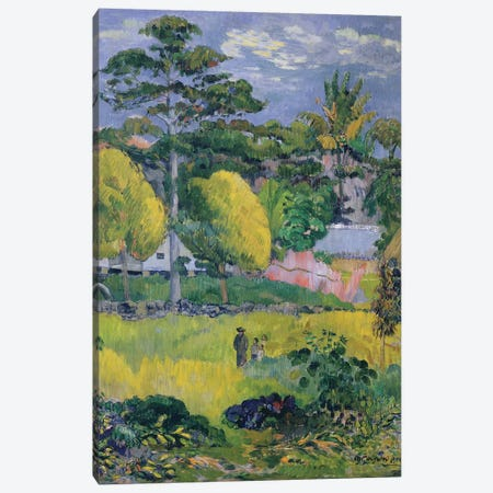 Landscape, 1901  Canvas Print #BMN3243} by Paul Gauguin Canvas Print