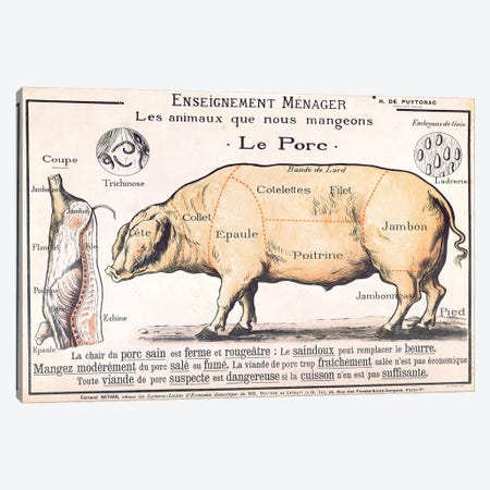 Cuts Of Pork Illustration From A French Domestic Science Manual Canvas Print #BMN3246} by French School Canvas Art