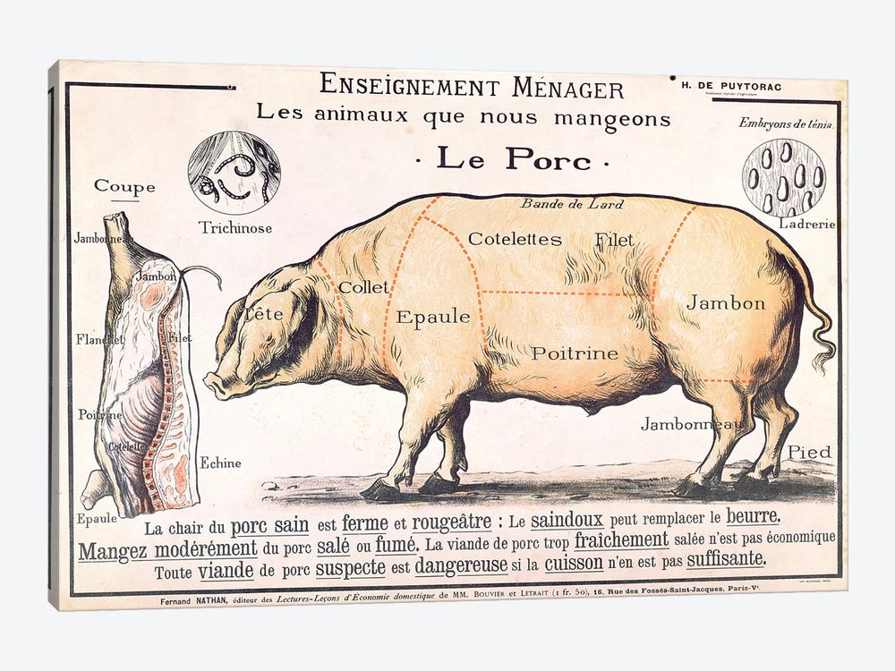 Cuts Of Pork Illustration From A French Domestic Science Manual by French School 1-piece Canvas Wall Art
