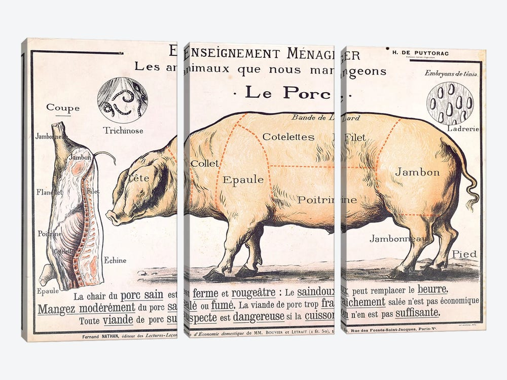 Cuts Of Pork Illustration From A French Domestic Science Manual by French School 3-piece Canvas Artwork