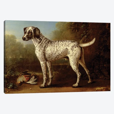 Grey spotted hound, 1738  Canvas Print #BMN3253} by John Wootton Canvas Wall Art