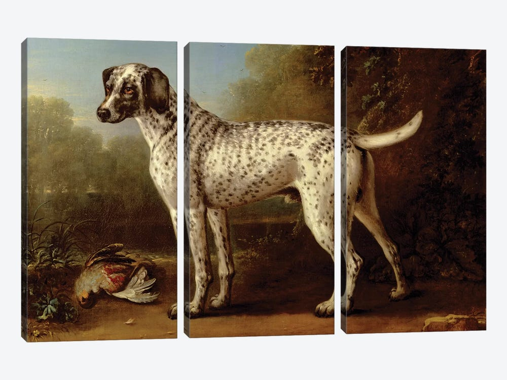 Grey spotted hound, 1738  by John Wootton 3-piece Canvas Art