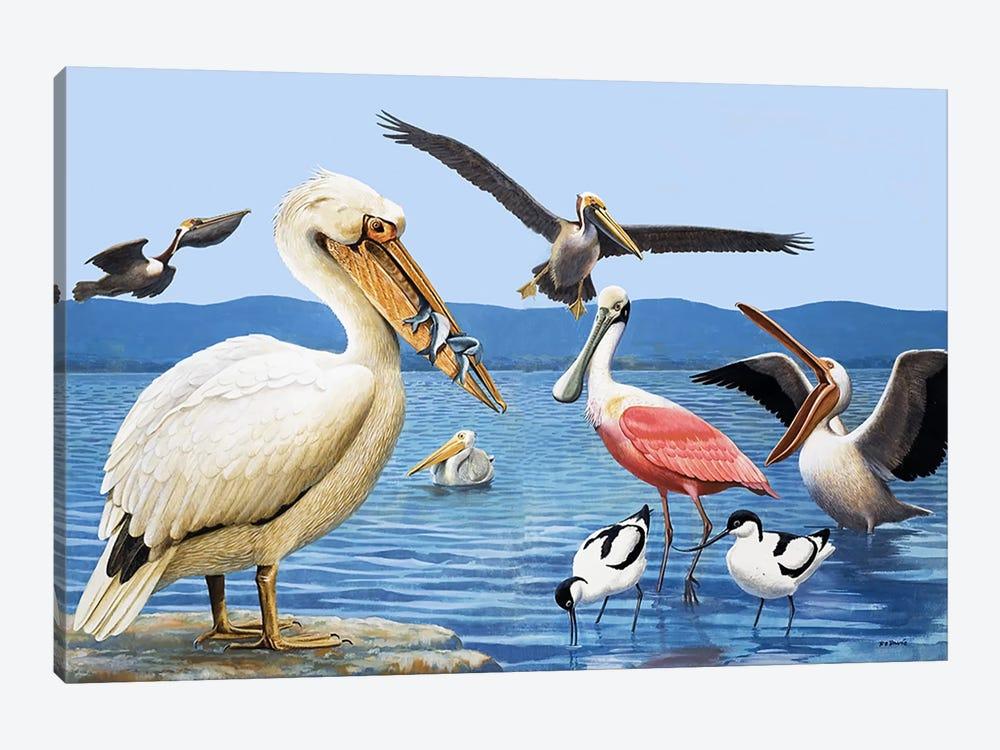 Birds with strange beaks by R.B. Davis 1-piece Art Print