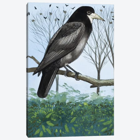 Rook Canvas Print #BMN3288} by English School Canvas Print