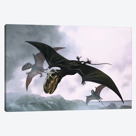 Dimorphodon Canvas Print #BMN3291} by William Francis Phillipps Canvas Art