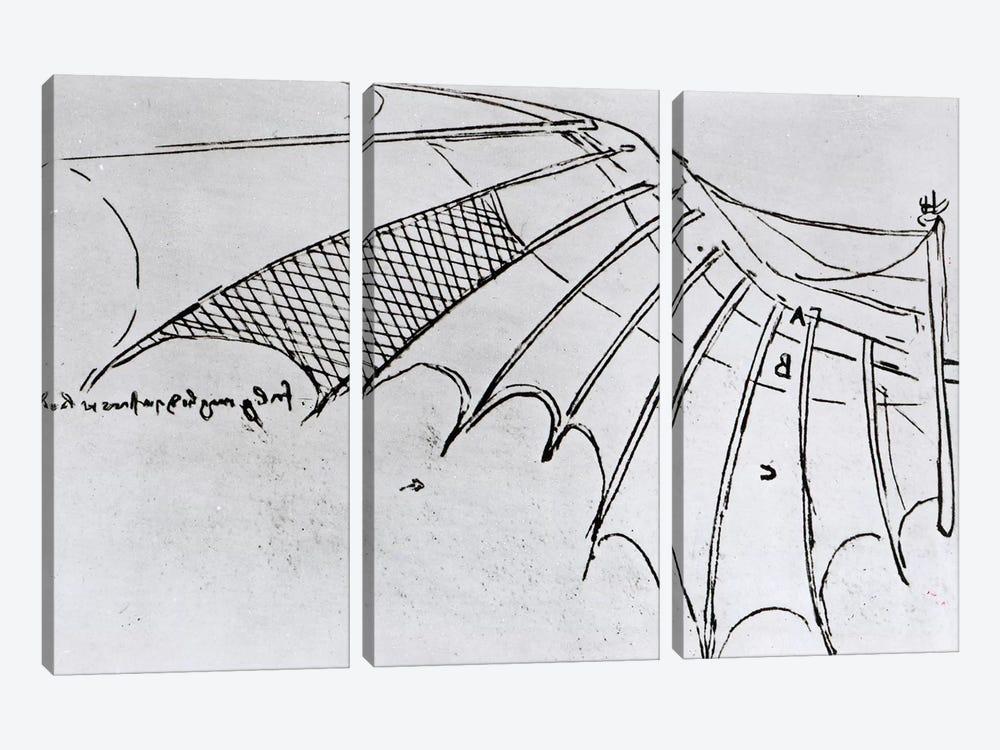 Detail of a mechanical wing from fol. 74r, manuscript B 2173, 1488-89  by Leonardo da Vinci 3-piece Canvas Artwork
