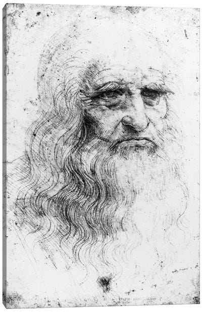 Self portrait by Leonardo da Vinci Canvas Artwork