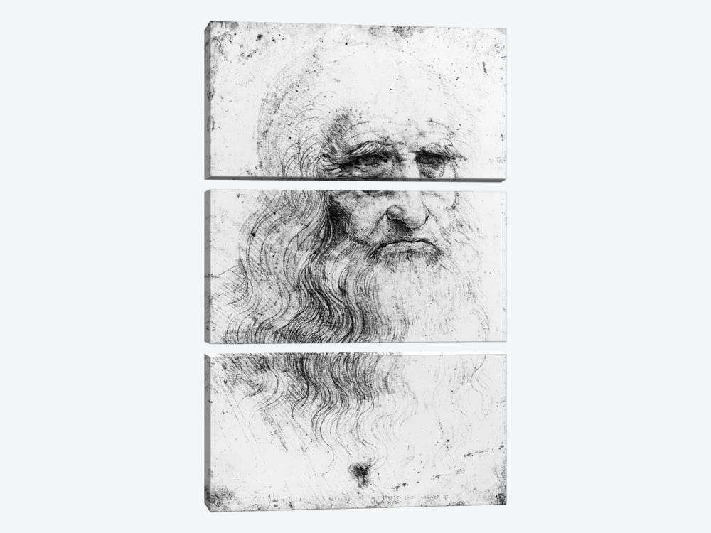 Lithograph, Self Portrait, c.1515-16 (Musei Reali Torino) by Leonardo da Vinci 3-piece Canvas Art