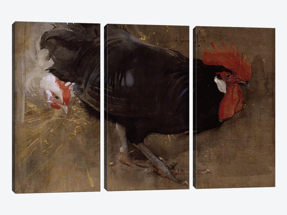 The Black Cock  by Joseph Crawhall 3-piece Canvas Art Print
