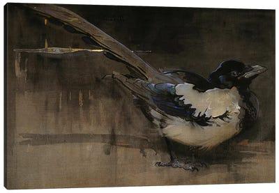 The Magpie  Canvas Art Print