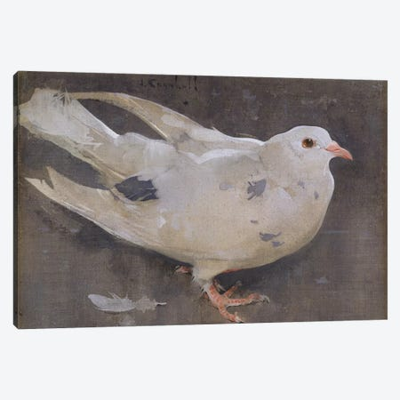 The Pigeon  Canvas Print #BMN3420} by Joseph Crawhall Canvas Print