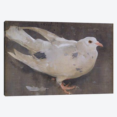 The Pigeon  Canvas Print #BMN3420} by Joseph Crawhall Canvas Print