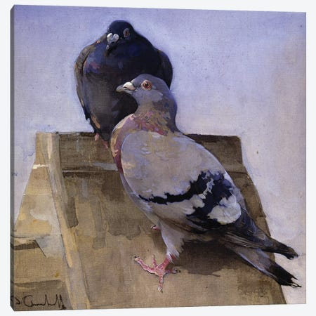 Pigeons on the Roof  Canvas Print #BMN3421} by Joseph Crawhall Canvas Print