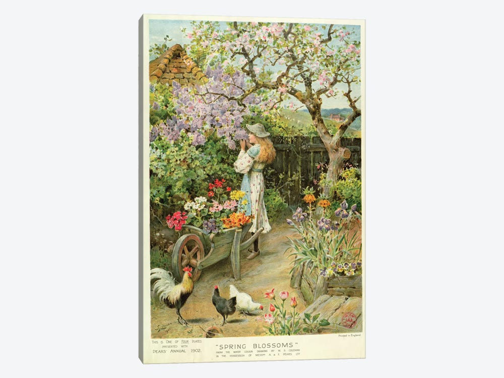 Spring Blossoms, from the Pears Annual, 1902 by William Stephen Coleman 1-piece Canvas Art