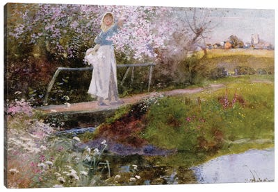The Orchard Brook  Canvas Art Print