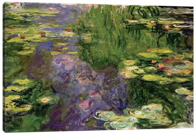 Waterlilies  Canvas Art Print