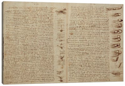 A page from the Codex Leicester, 1508-12  Canvas Art Print