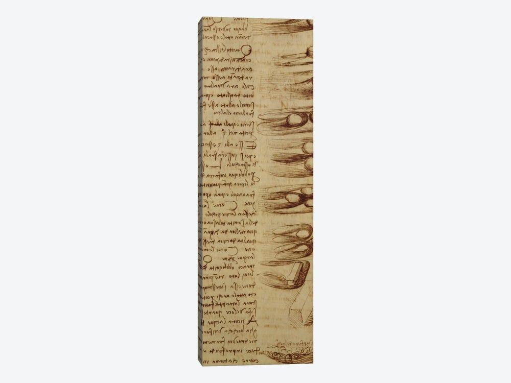Scientific diagrams, from the 'Codex Leicester', 1508-12  by Leonardo da Vinci 1-piece Canvas Artwork