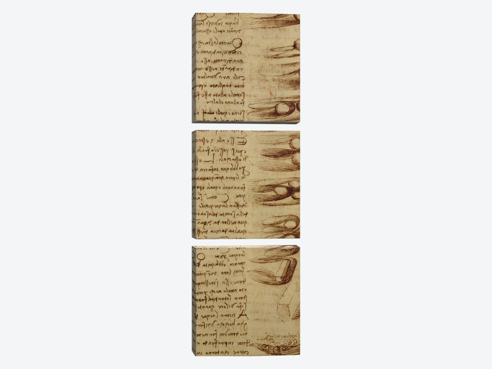 Scientific diagrams, from the 'Codex Leicester', 1508-12  by Leonardo da Vinci 3-piece Canvas Wall Art