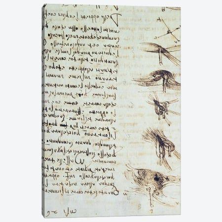 Scientific diagrams, from the 'Codex Leicester', 1508-12  Canvas Print #BMN3528} by Leonardo da Vinci Canvas Artwork