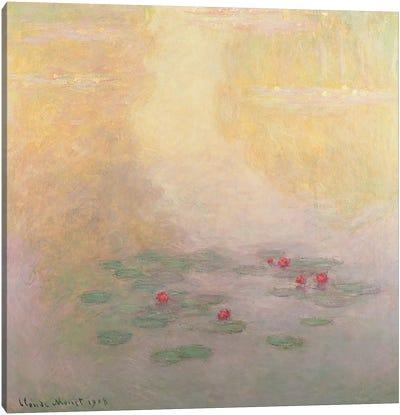 Nympheas, 1908  Canvas Print #BMN3537