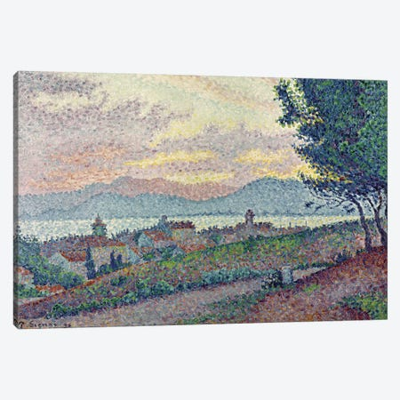 St. Tropez, Pinewood, 1896  Canvas Print #BMN353} by Paul Signac Canvas Artwork