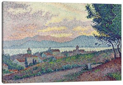St. Tropez, Pinewood, 1896  Canvas Art Print
