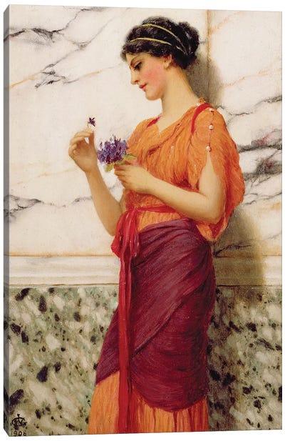 Violets, 1908  Canvas Art Print