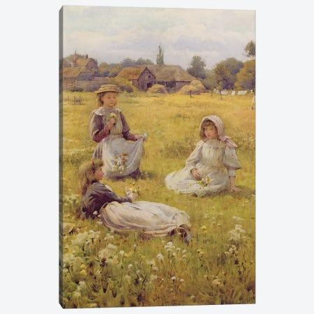 Picking Wild Flowers  Canvas Print #BMN3562} by William Affleck Canvas Art