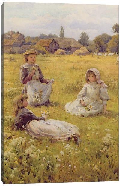 Picking Wild Flowers  Canvas Art Print
