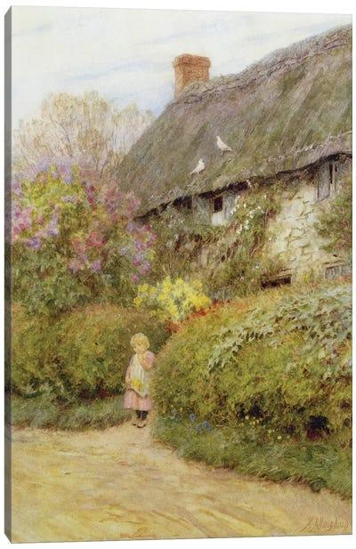 Freshwater Cottage  Canvas Art Print