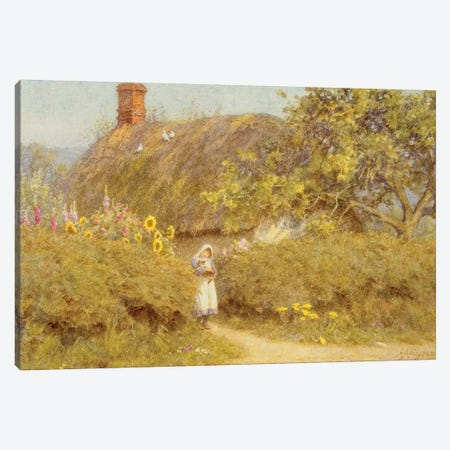 A Surrey cottage  Canvas Print #BMN3565} by Helen Allingham Art Print