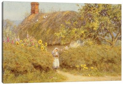 A Surrey cottage  Canvas Art Print