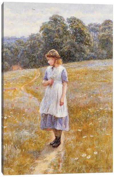 Daydreamer, 1878  Canvas Art Print