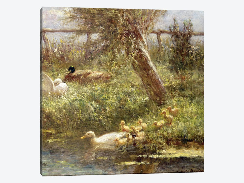 Ducks and ducklings  by David Adolph Constant Artz 1-piece Canvas Wall Art