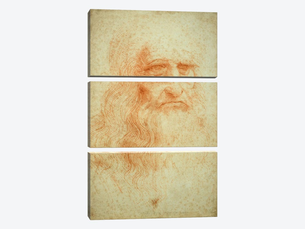 Self portrait, c.1512 by Leonardo da Vinci 3-piece Canvas Artwork